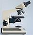 Mikroskopie-Forum