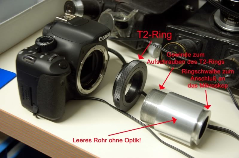 Grundlagen der mikrofotografie kameraadaptionen