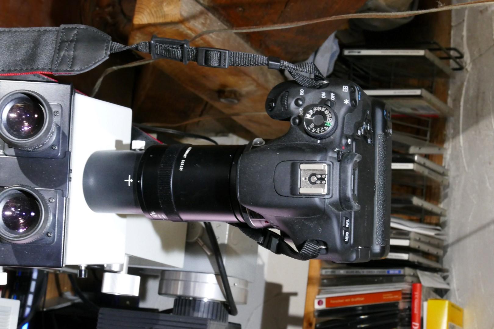 Fotoadaption orthoplan mit variookular