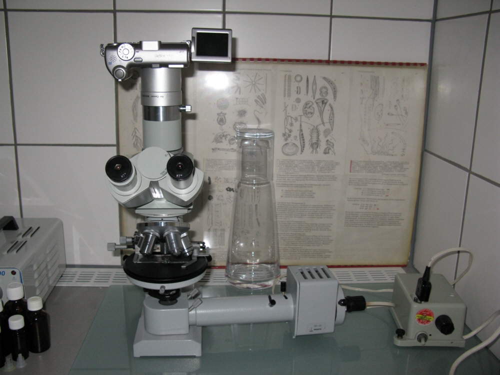 Mikroskop set für kinder ab jahre in brandenburg falkensee